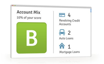 Free Credit Report Summary - Account Mix