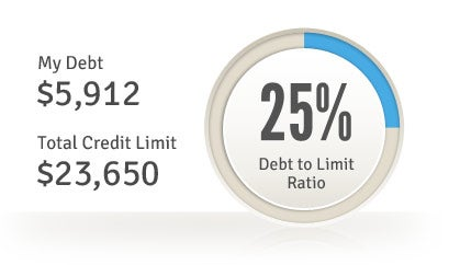 Free Credit Report Summary - Debt Utilization